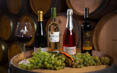 Los Taninos del Vino contra el Coronavirus